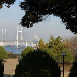 Baybridge viewed from Minatonomieruoka park
